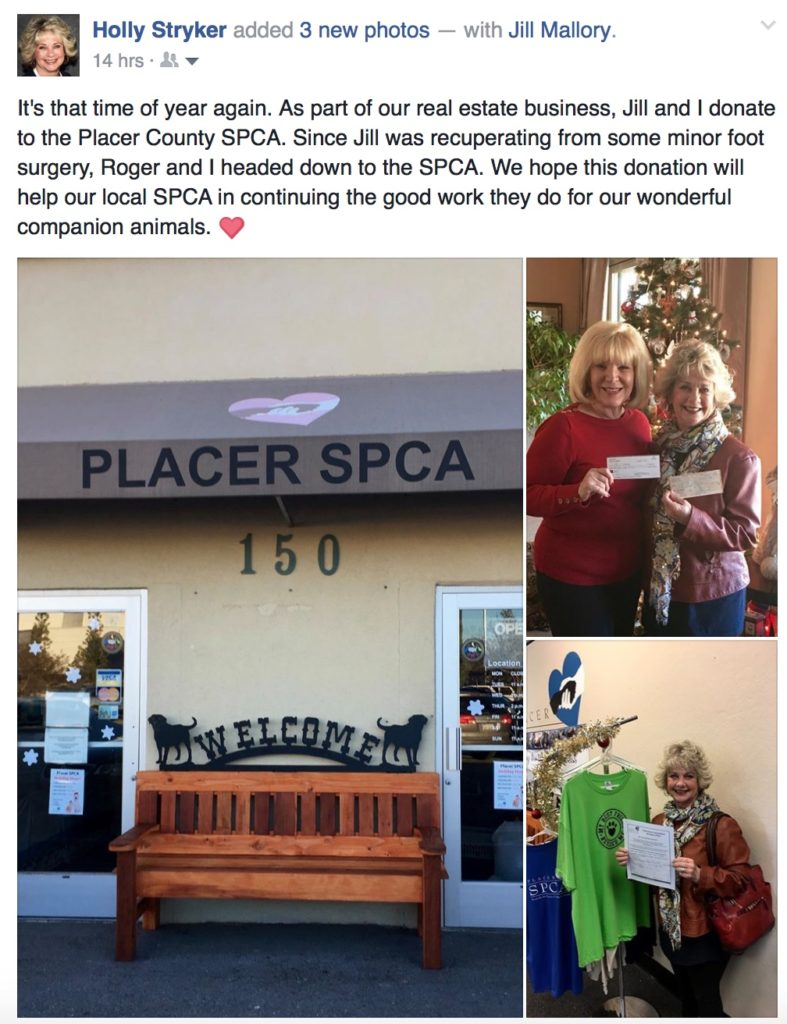 Donation To The SPCA